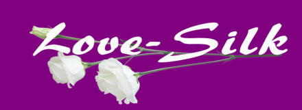 Love Silk Logo